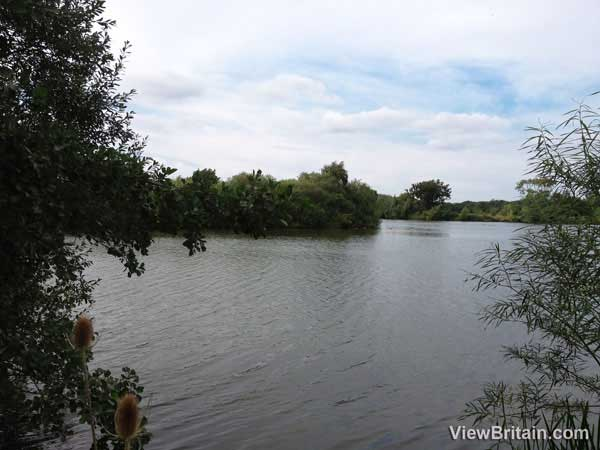 dinton-pastures-country-park-lake
