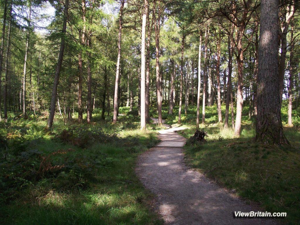 Derwentwater-Walk-around-the-Lake-Keswick-Lake-District