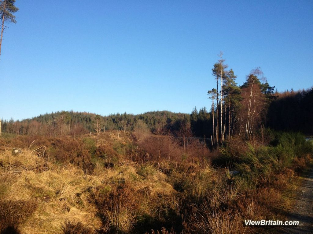 Garbeg-Hill-Loch-Ard-Forest