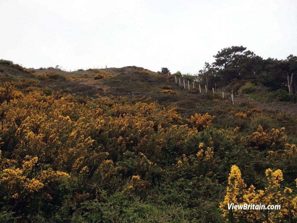 Great-Orme-Summit-Trail-Llandudno