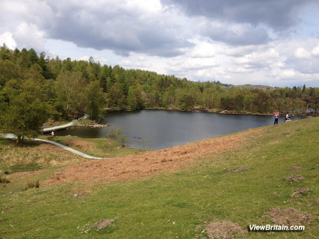 Tarn-Hows-lake-Lake-District-England