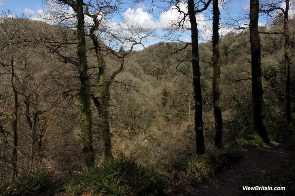 View-across-Lydford-Gordge