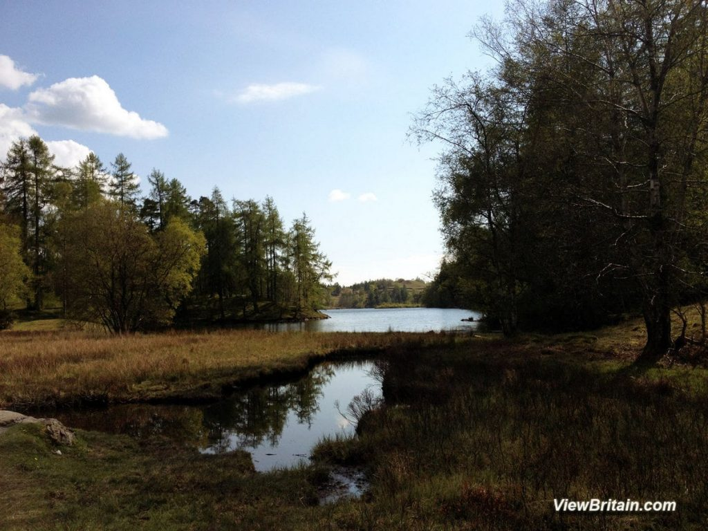 View-of-Tarn-Hows-Lake-from-the-North