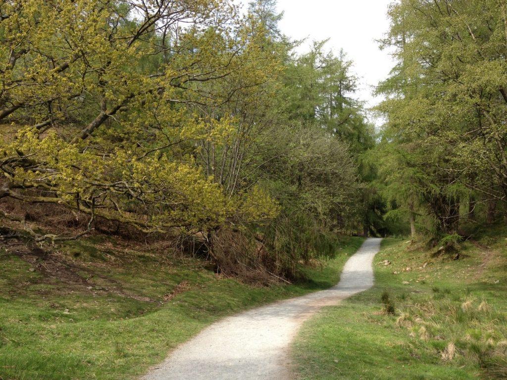 tarn-hows-lake-circular-path