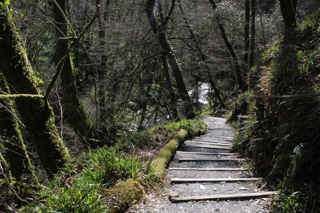 walk-at-lydford-gorge-with-steps